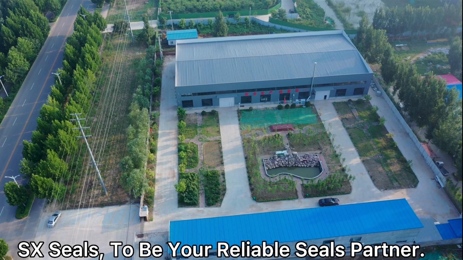 SX Seals